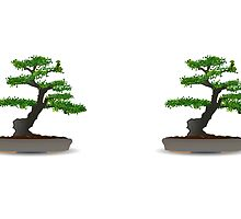 Bonsai by TiMaN