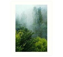 Rolling Mist Art Print