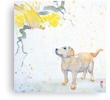 No one saw Spike catch the Budgie Canvas Print