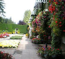 An Italian Garden. by joycee