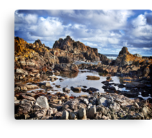 West Coast King Island Canvas Print