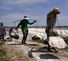 Salt Harvest by Dave Lloyd