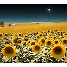 Suns and a Moon by Mal Bray