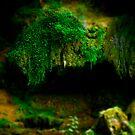 Green by mario farinato