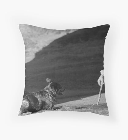 Ya gonna throw da stick, or what! Throw Pillow