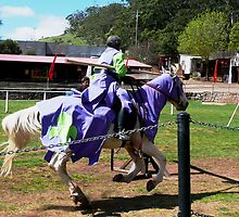 Jousting by Janette Anderson