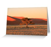Alone in the Desert Greeting Card