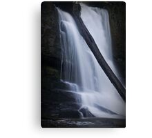 Natures Force Canvas Print