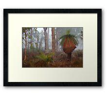 Fog In Frankland Bush Framed Print