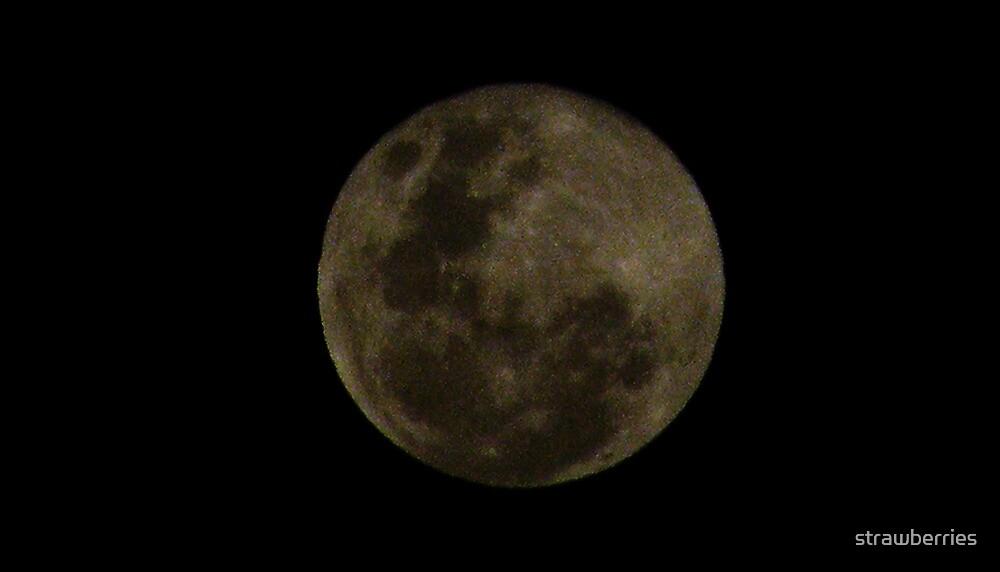 Leo's Moon, My Moon by strawberries