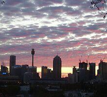 Sydney skyline by Martyn Baker | Martyn Baker Photography