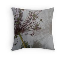 Allium Seedheads and Reflection Throw Pillow