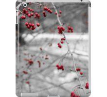 Winter Berries of Arrowtown iPad Case/Skin