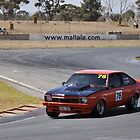 Torana on a charge by bsn-photography