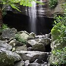 Buderim Mountain Creek, Sunshine Coast, 11 July 2010 by lynmel