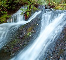 Top of Quailles Falls by tinnieopener