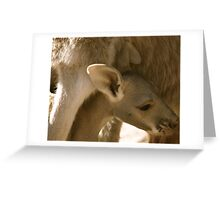 Motherly Love Greeting Card