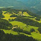 Green, green, green... by zolim