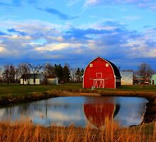 Pondside Farms by Larry Trupp