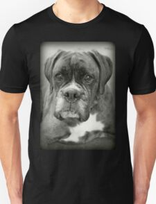 Is That For Me?.... Boxer Dogs Series  T-Shirt
