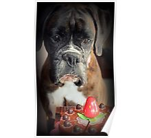 Sigh ... Wish It Was Real.... Boxer Dogs Series Poster