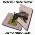 The Grass is Always Greener by lar3ry
