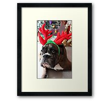 Reindeer This Year?...... Anything For That Cookie! Framed Print