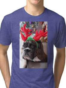 Reindeer This Year?...... Anything For That Cookie! - Boxer Dogs Series Tri-blend T-Shirt