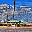 A Winnipeg Landmark by Larry Trupp