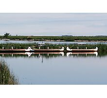 Docked Canoes Photographic Print