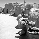 Ancient Homes Of The Desert by Susan Bergstrom