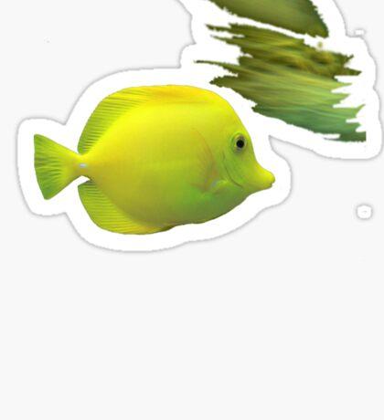 Yellow Fish Sticker