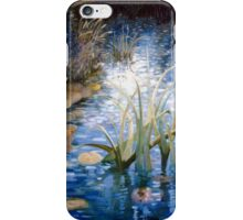 Natures tranquility iPhone Case/Skin