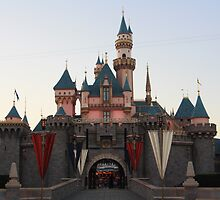 Disney Castle by Kimberly Lusk