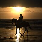 Any day started on horseback must be a good day by Brian Edworthy