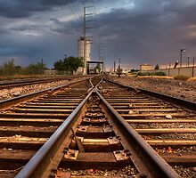 Tracks by Sue  Cullumber