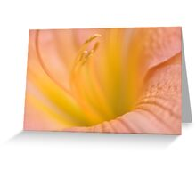 Pink Daylilly, As Is Greeting Card