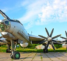 fighter airplane in Kiev by a1luha