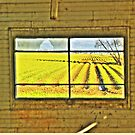 Barn Window by lincolngraham