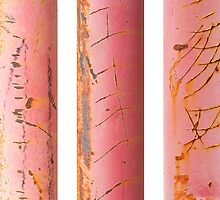 Sabi Study:  Pink Prison by Marilyn Cornwell