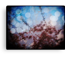 through the eyes of someone that can see more of the light than the rest Canvas Print