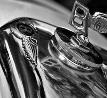 Bentley by Mike Higgins