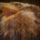 Eagle Fence by Gail Bridger