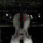 Barnyard Cello by ArtbyDigman