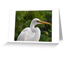 Egret portrait Greeting Card