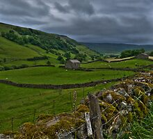 Swaledale under a threatening sky by Phil-Edwards