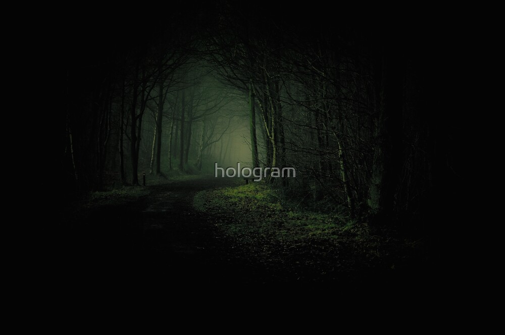 Look once and look no further.... by hologram