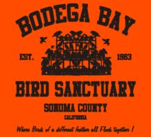 BODEGA BAY BIRD SANCTUARY Kids Tee
