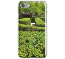 Labyrinth - a hedged maze iPhone Case/Skin
