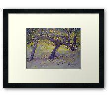 Glory of the Wine Vine! Framed Print